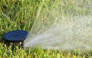 Euless sprinkler repair team restores pop up head